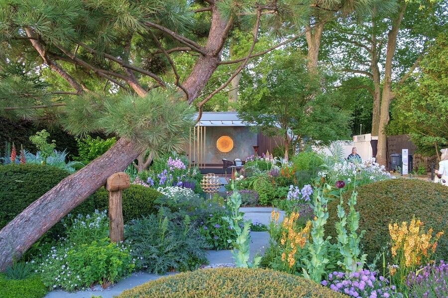 Doe de Chelsea chop en geniet langer van de vaste planten in je tuin – Tuinieren met Buitenleven