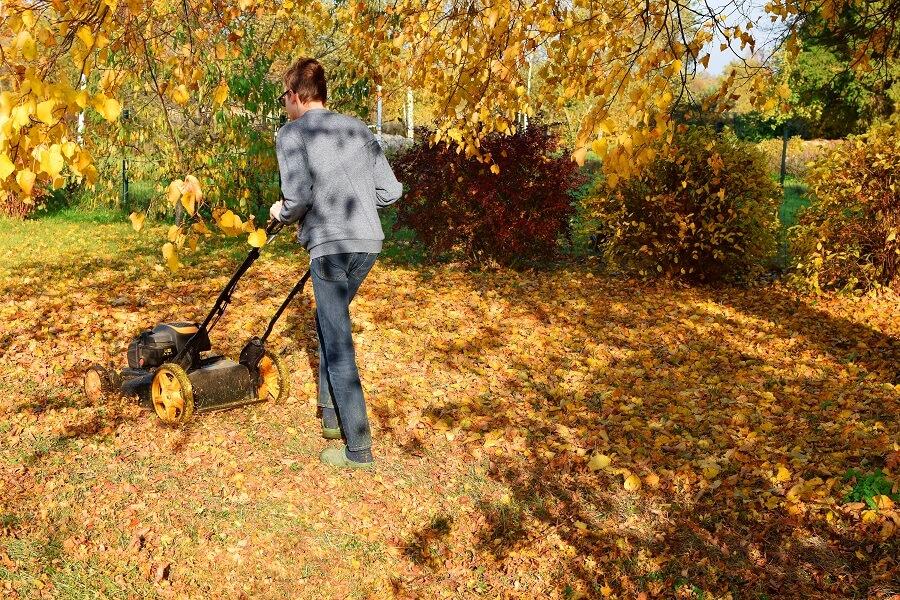 Herfstbladeren: zo composteer je ze - Buitenleven