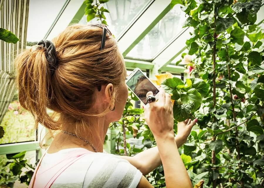 Buitenleven zocht apps voor je tuin en je planten
