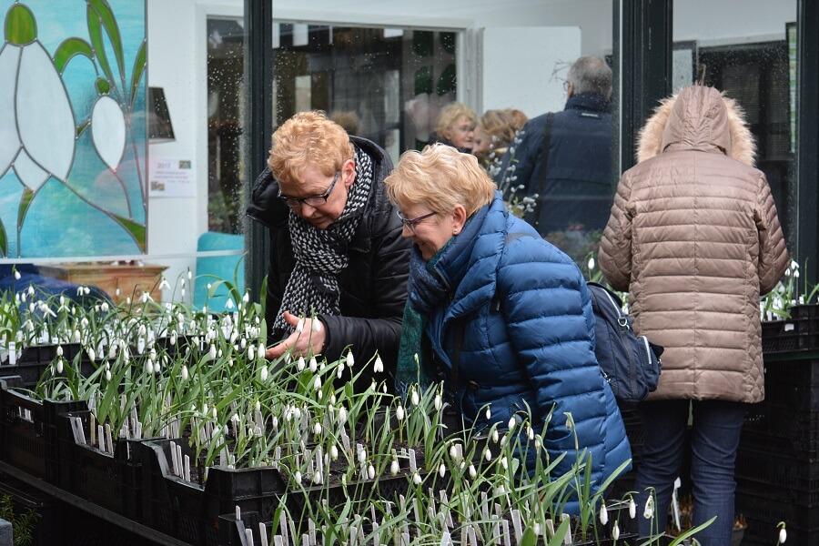 Bloembollen en sneeuwklokjes kijken tijdens Oost-Groninger bloembollenroute – eropuit met Buitenleven